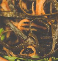 Carrot & Sea Spaghetti Salad